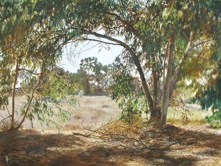 יער אילנות ציור שמן על בד - נועם גונם