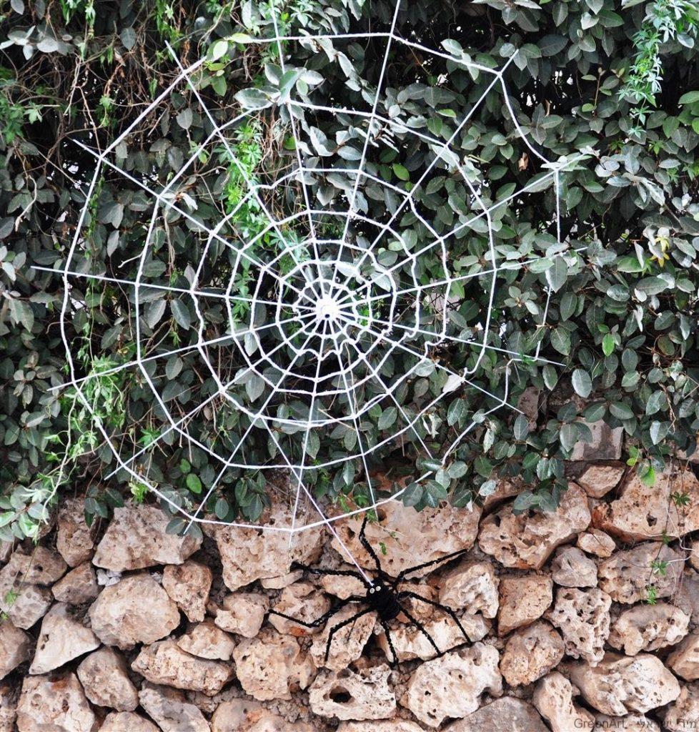 מטריות ישנות הפכו לפיסול עכביש טווה חוטים ברשת