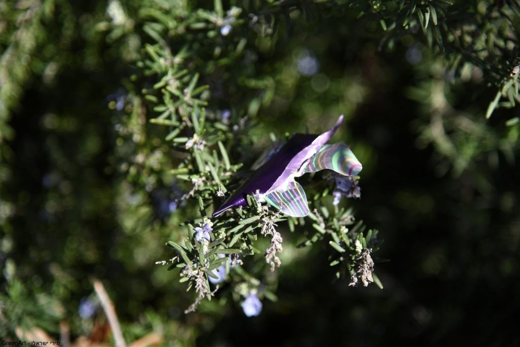 אמנות לשימור מגוון המינים של הפרפרים כמאביקים בטבע  ECO ART