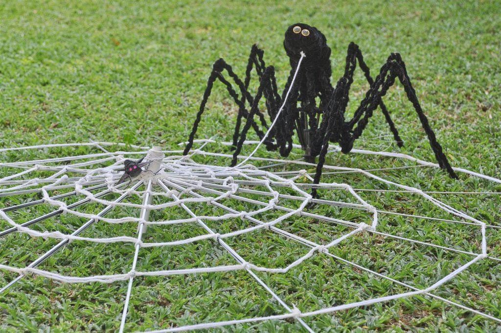 העכביש שלי הטווה חוטים ליצירה - החוט המקשר-