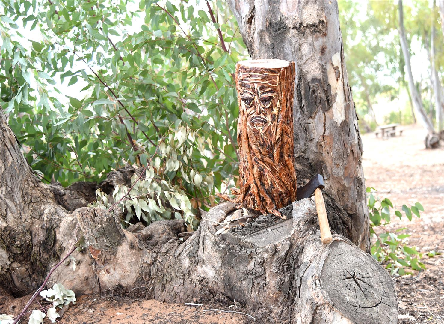 הגזע הכרות שמאחוריו עץ עם פנים עצובות - אמנות למען הטבע -eco art