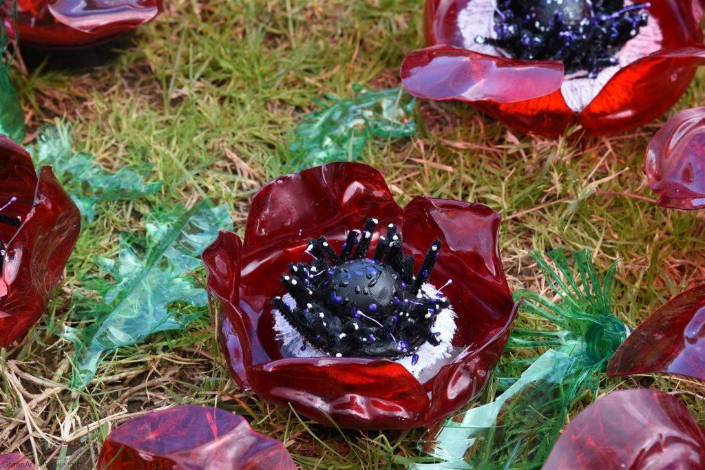 כלנית פרח בר מוגן כמסר להגנת הטבע והסביבה