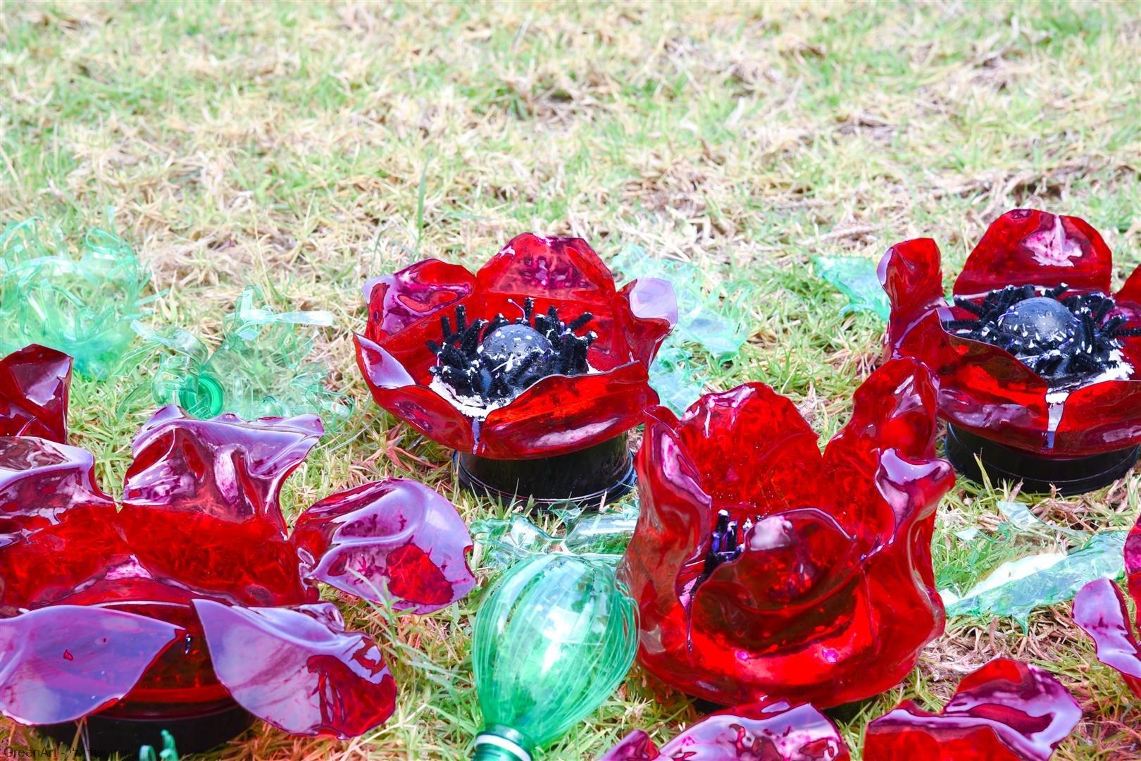 שדה כלניות ופרגים מבקבוקי פלסטיק- צילום ויקי מוצפי