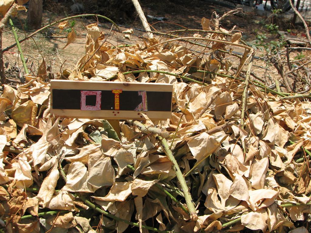 שלטים אקולוגיים ממגנטים ממוחזרים לגן האקולוגי של אונברסיטת ת