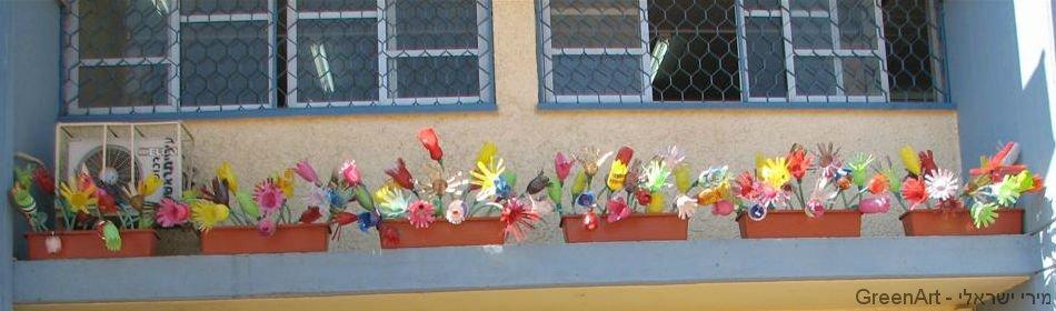 פרחים באדניות במעקה גג בבית ספר סיני