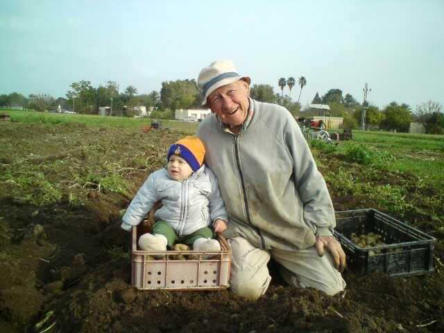 מריו לוי  חלוץ החקלאות האורגנית בישראל עדיין עובד בגילו המופלג בשדות הקיבוץ