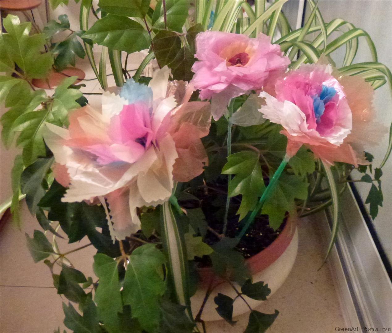 פרחים משאריות שקיות ניילון צבעוניות