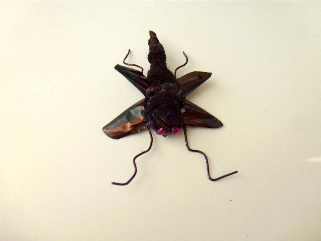 פיסול חרקים מפסולת קפסולות וחוטי מתכת