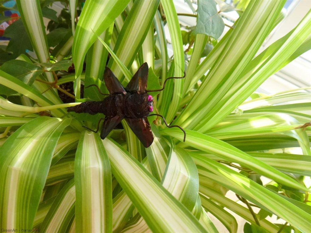 חרקים מפוסלים מקפסולות של קפה