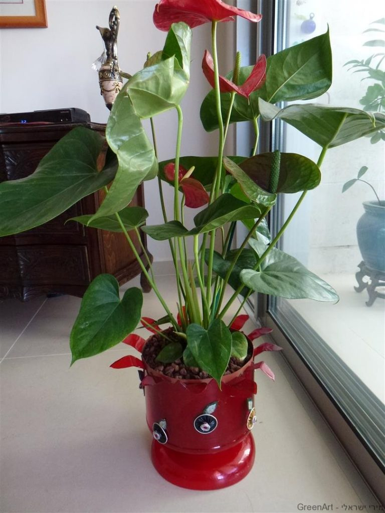 פיסול מפסולת האדם בשילוב הצומח מן הטבע