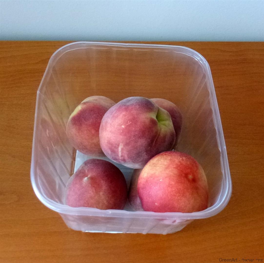 פעם היינו סלסלת פלסטיק לאריזת פירות וכעת הפכנו לטנא חגיגי ומהודר