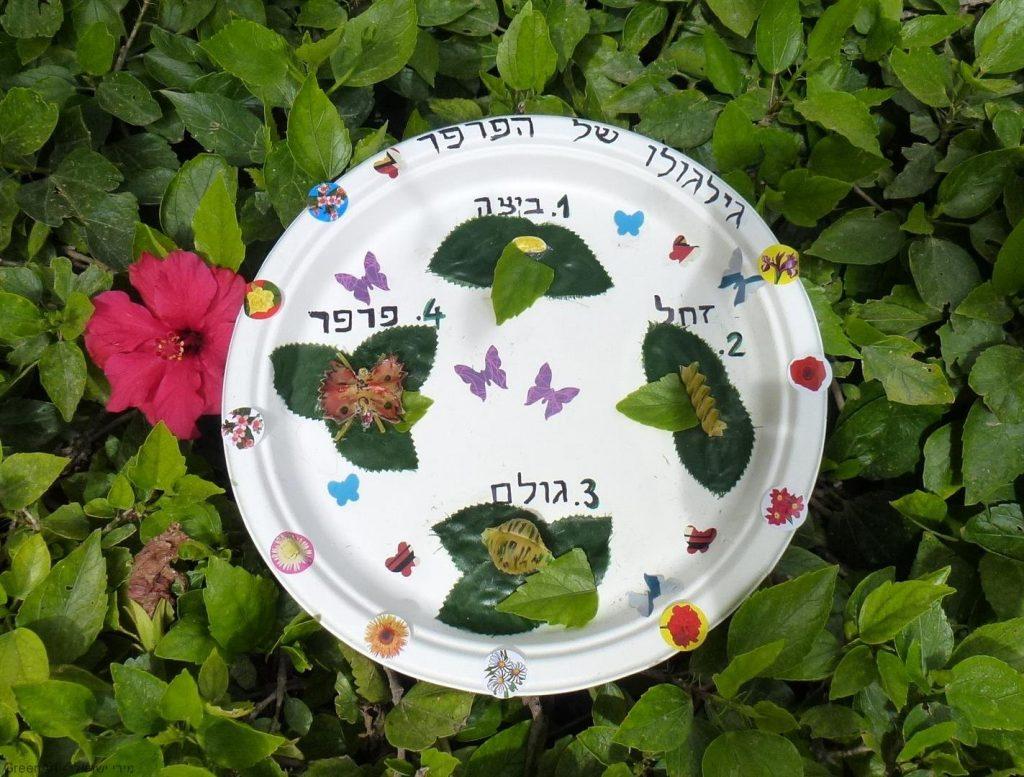 פיתוח חשיבה יצירתית אצל ילדים ומעקב אחר הפרפרים