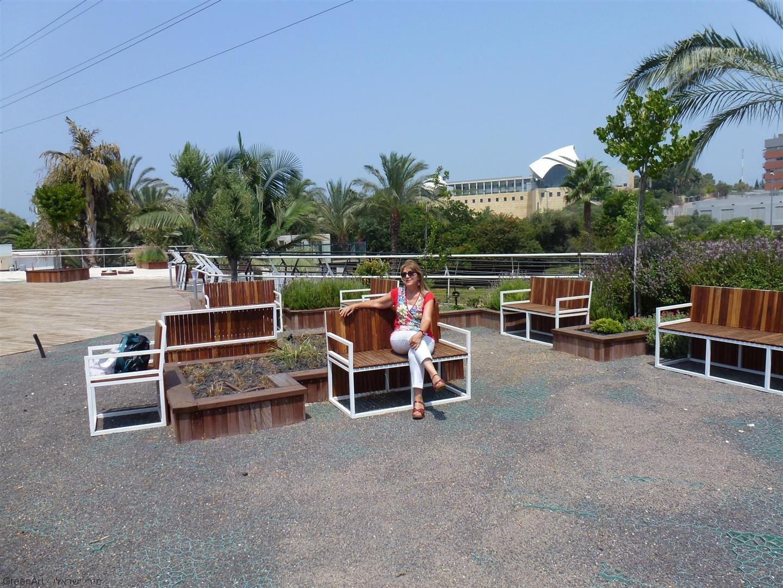 פינות ישיבה ומרגוע על גג המועצה לישראל יפה