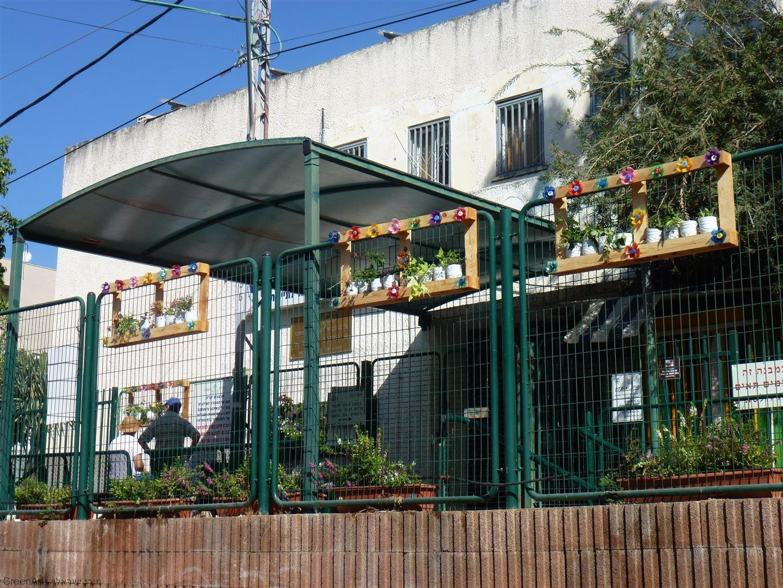 האדניות הפרחוניות מעטרות את גדרות בית הספר בפריחה מרהיבה