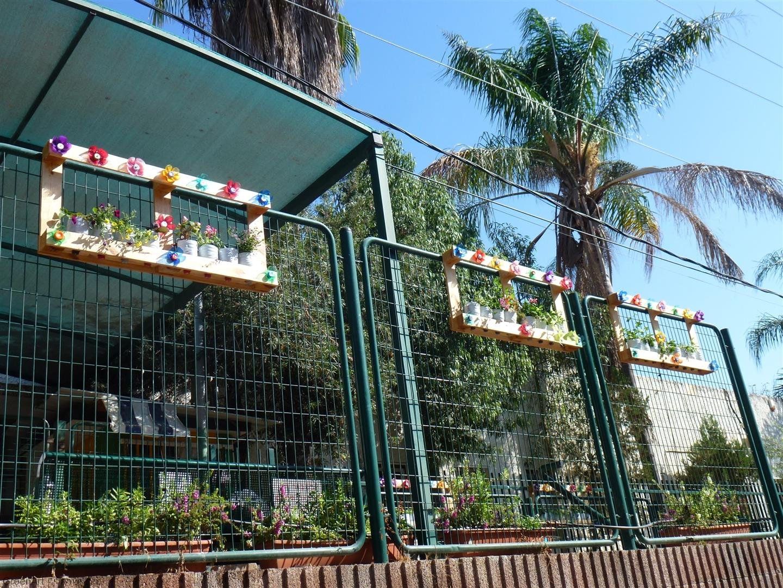 תליית האדניות על גדרות בית הספר שהוסיפו יופי והדר לסביבה