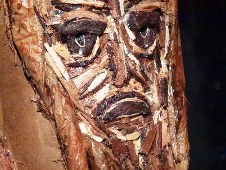 דמעות נוזלות מעיני גזע העץ הכרות- אמנות אקולוגית ECO ART