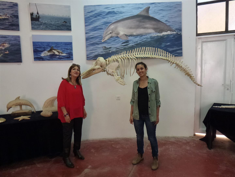 עם נוי ליד שלד של דולפין במרכז הדולפין והים באשדוד