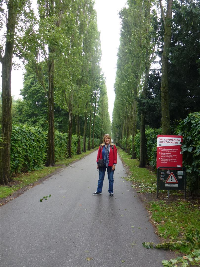 בית הקברות בו קבור הסופר והמשורר הדני הנס כריסטיאן אנדרסן