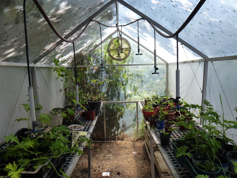 חממה לגידולי צמחים בגינת מרכז אקולוגי סודות ירוקים