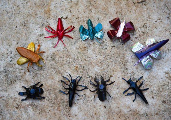 פיסול חרקים להגברת המודעות לשימור מגוון המינים בטבע