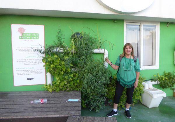 """סיור חוויתי במרכז קיימות """"סנטר פארק"""" בגג של דיזנגוף סנטר בתל אביב"""